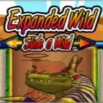 Crocodopolis Slot Beschreibung – Nextgen