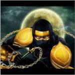 Ninjas Path Slot Beschreibung – Novomatic