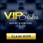 Vip Stakes Casino Erfahrungen Tipps und mehr