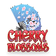 Cherry Blossoms - Nextgen Gaming