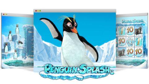 Penguin Splash Slot Bilder