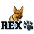 Rex - Novomatic
