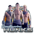 Scandinavien Hunks - Playngo