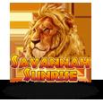 sunrise_savana-cryptologic