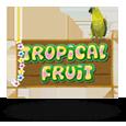 tropicalfruit_Neo-Gaming