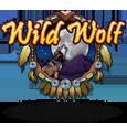 wild_wolf-IGT