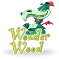 wonder_wood-Visionary-iGaming